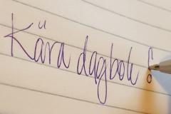 Kära dagbok...