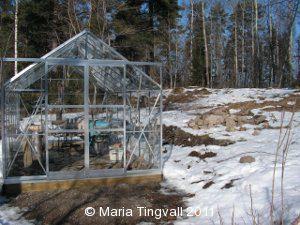 Dagsmeja. Snön smälter runt växthuset