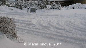 Snötäkt mark om morgonen