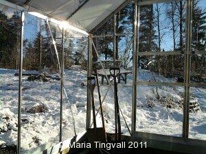 Njuter av vintern i växthuset